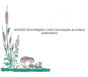 SOCIÉTÉ BOTANIQUE et MYCOLOGIQUE du FOREZ : SOBOMYFO